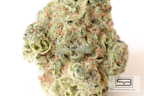 light green bud of Flix 'N Chill Weed Strain with orange pistils spattered throughout