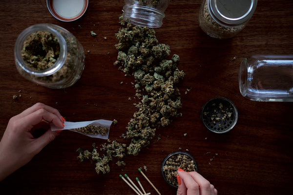 A jar of marijuana is dumped out onto a table and a woman with well manicured nails rolls a joint