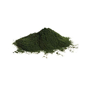 Bio Chlorella Pulver - ingenious nature