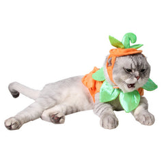 PULAMA Funny 1 PC Halloween Pumpkin Hat Cap for Dogs Cats Cute Costumes Caps Pet Hats Cat Dog Puppy Hair Accessory Adjustable Cat Decor