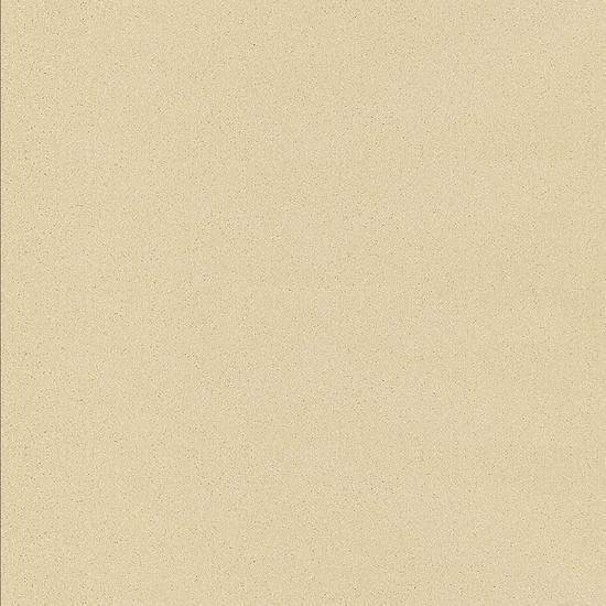 American Olean Colorbody Porcelain Unpolished Floor Tile, Etiquette Collection, Multi-Color, 24x24