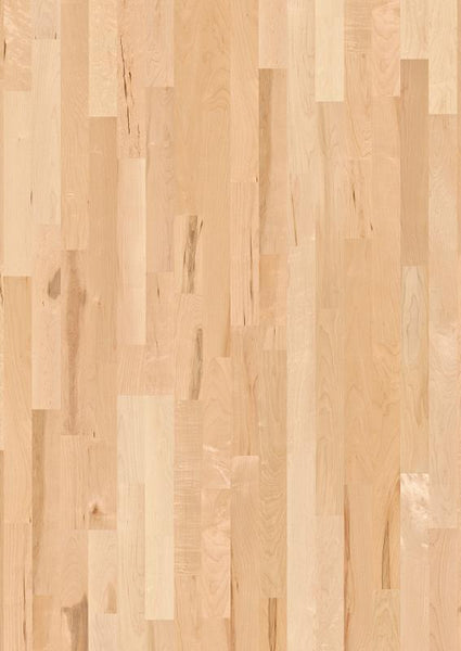 Boen Hardwood, Maple Animoso