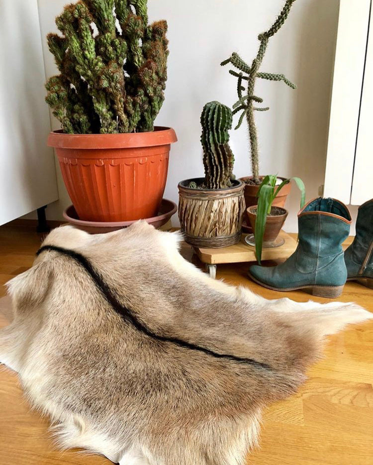 brown goatskin rugs