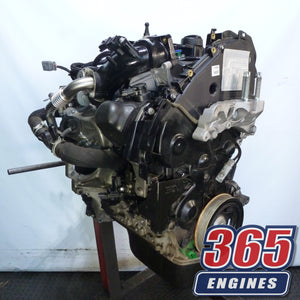 Buy Used Ford Transit Courier Engine 1.5 TDCI Diesel Engine XUCD Code (2015 - 2019) - 365 Engines
