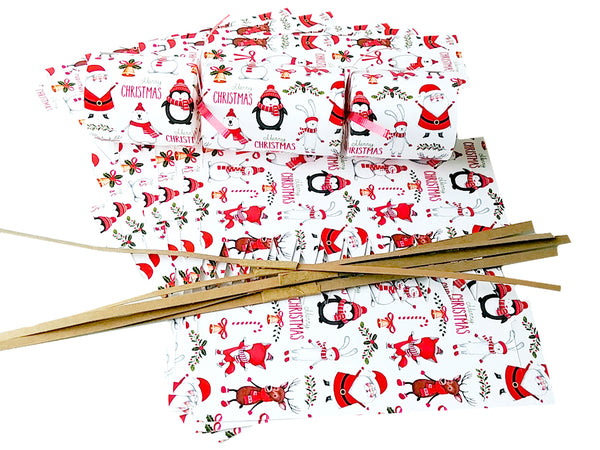"DIY Christmas Cracker Kit | ""Penguins, Santas, Bears"""