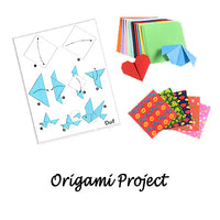 Origami project instructions and origami papers