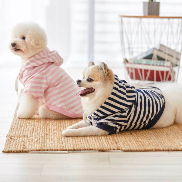 Pups Striped Hoodie