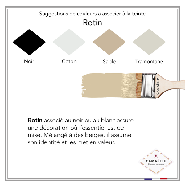 Peinture Color'Velours Rotin