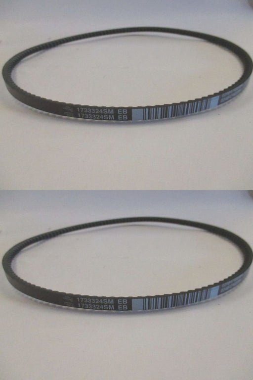 2 Pack Genuine Murray 1733324SM Traction Drive Belt Fits 579932MA 579932 OEM