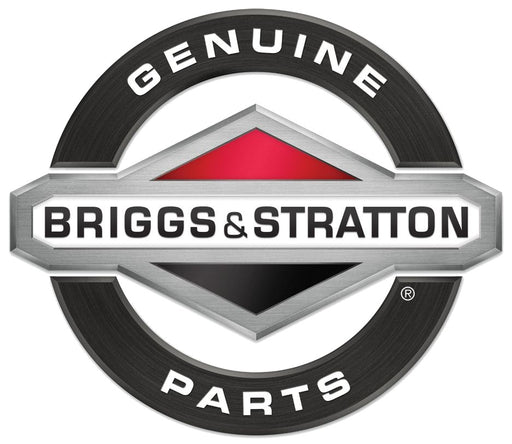 2 Pack Genuine Briggs & Stratton 808116s Fuel Filter Fits Vanguard V-Twins