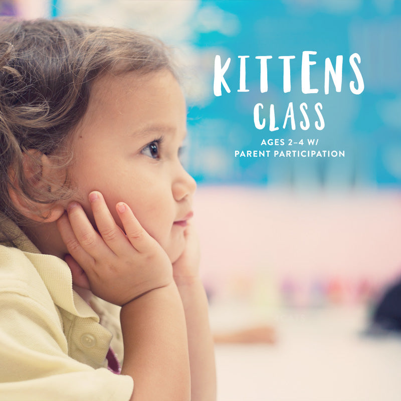 Kittens Class | Sept to Nov Session