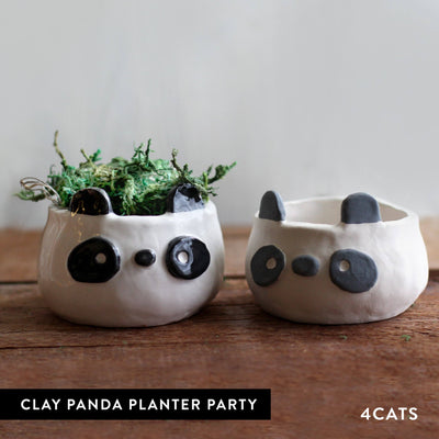 4Cats Kids Clay Panda Planter Party