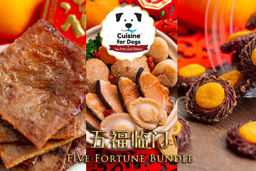 五福临门 Five Fortune Bundle