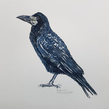 Load image into Gallery viewer, Original Rook watercolor