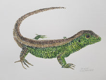 Load image into Gallery viewer, Original Sand Lizard watercolor