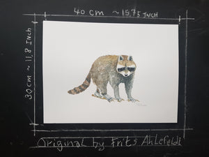 Original Raccoon watercolor