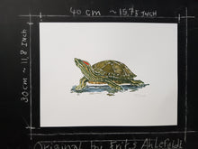 Load image into Gallery viewer, Original Red Eared Slider Turtle watercolor