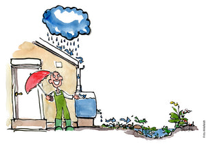Drawing of a rain management system with water from roof through reservoir and into garden with frog. Illustration by Frits Ahlefeldt
