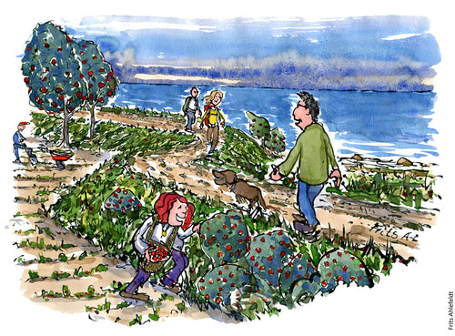 Drawing of people walking on a dyke path ( climate path) while others pick fruit or wild farm along it. Climate change Illustration by Frits Ahlefeldt