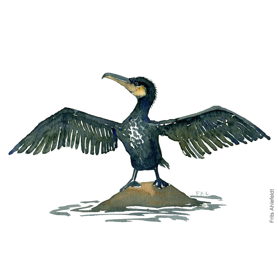 Dw00076 Download Great cormorant bird wings watercolor