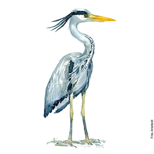 Dw00079 Download Grey heron bird watercolor