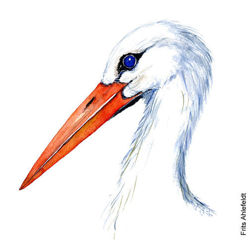 Dw00083 Download White stork bird head watercolor