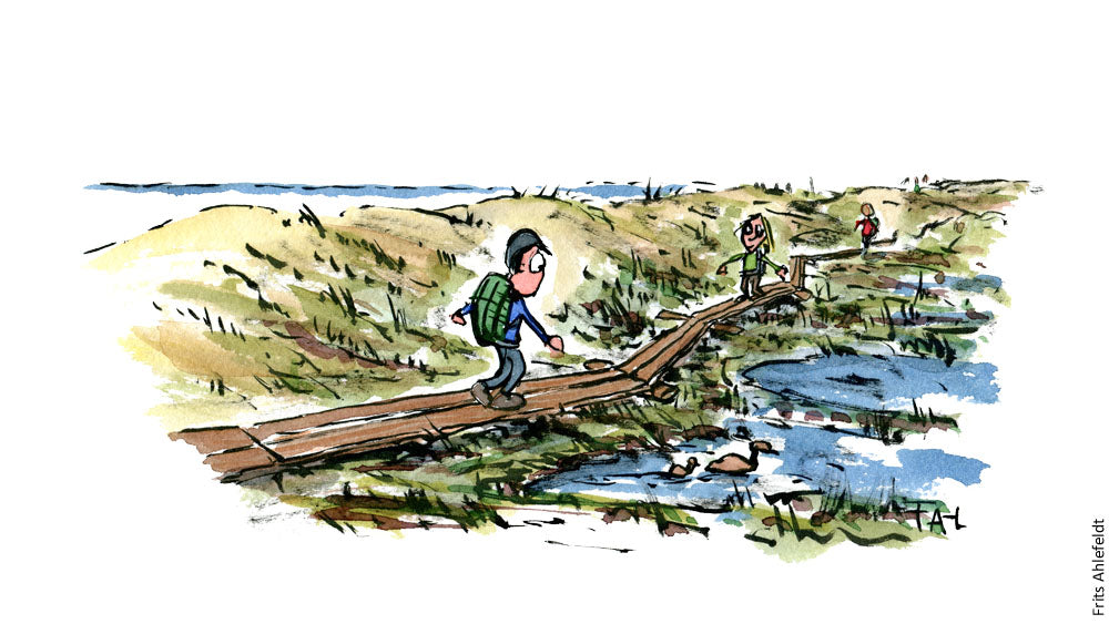 drawing of a hiker on a boardwalk hiking trail crossing a wet area by the sea. Illustration by Frits Ahlefeldt
