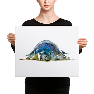 Monk Seal Watercolor Canvas print