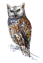 Load image into Gallery viewer, Original Owl on branch Watercolor