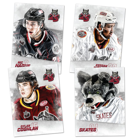 2018-19 Trading Card Set