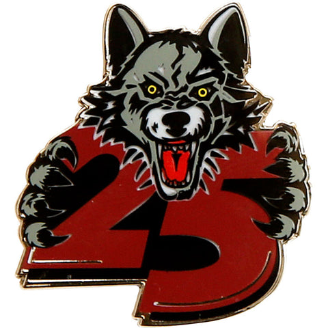 25th Anniversary Lapel Pin