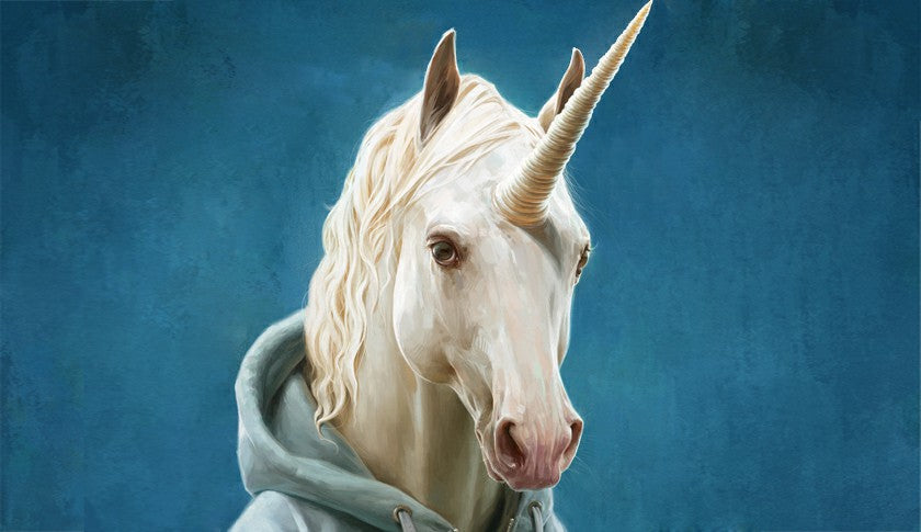 From Myth To Reality, What Do We Actually Know About Unicorns