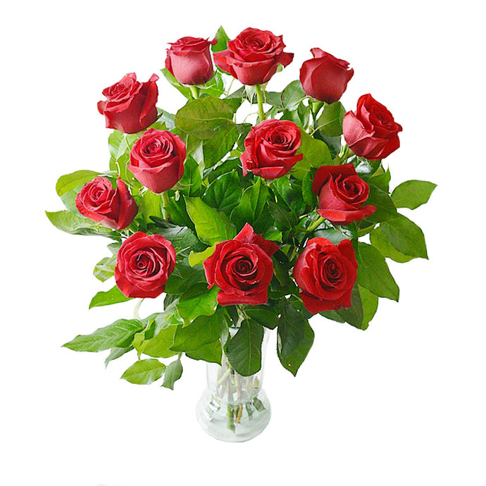 Dozen Fresh Long Stemmed Red Roses