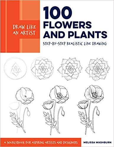 Draw Like an Artist 100 Flowers and Plants