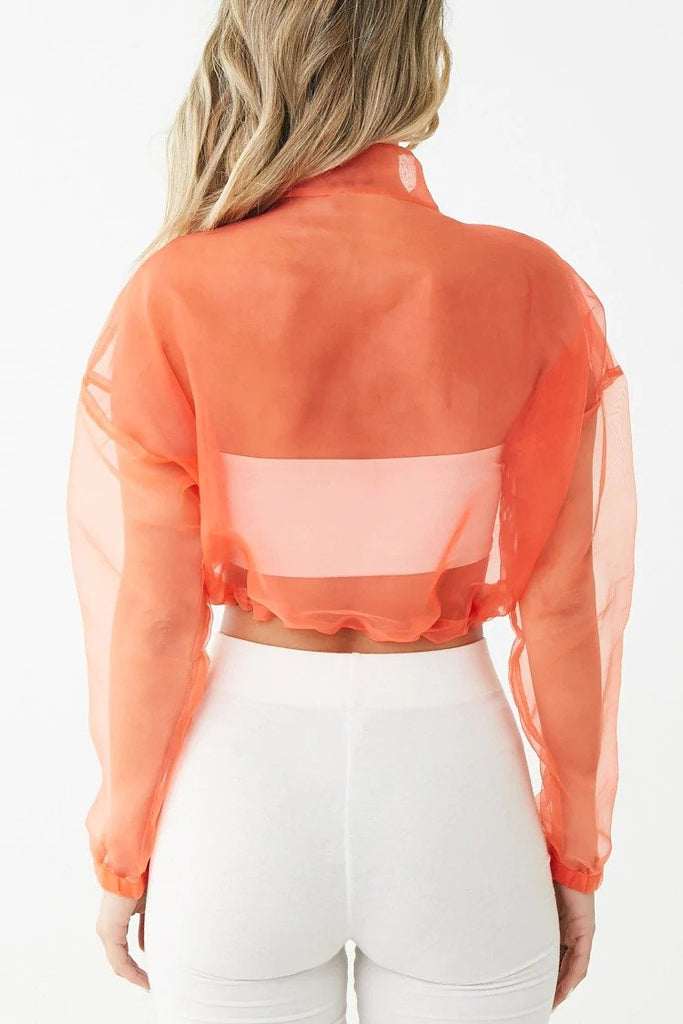 Sheer Organza Cropped Pullover