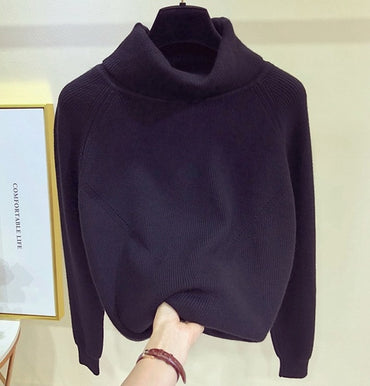 Thick Turtlneck Cowl Neck Women Sweater