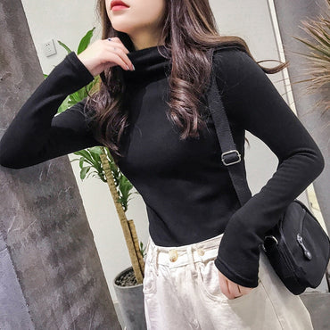 Turtleneck sweater women pullover winter clothes