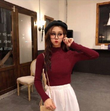 Women's autumn/winter new sweater with a high collar outside