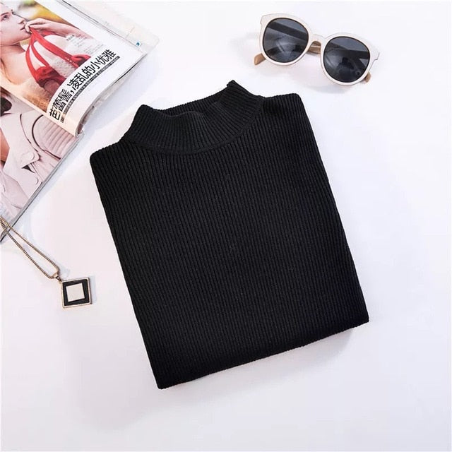 New-coming Autumn Winter Turtleneck Pullovers Sweaters