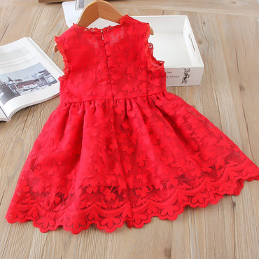 Mesh casual lace embroidery princess baby girl dress
