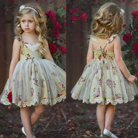 Girl Summer Lace Tutu Flower Princess Party Dress