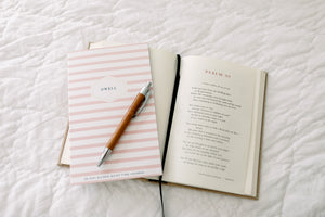 Dwell 30 Day Prayer Journal - Pink Stripe