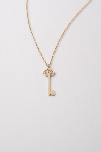 Emza Key Pendant Necklace -- Gold or Silver