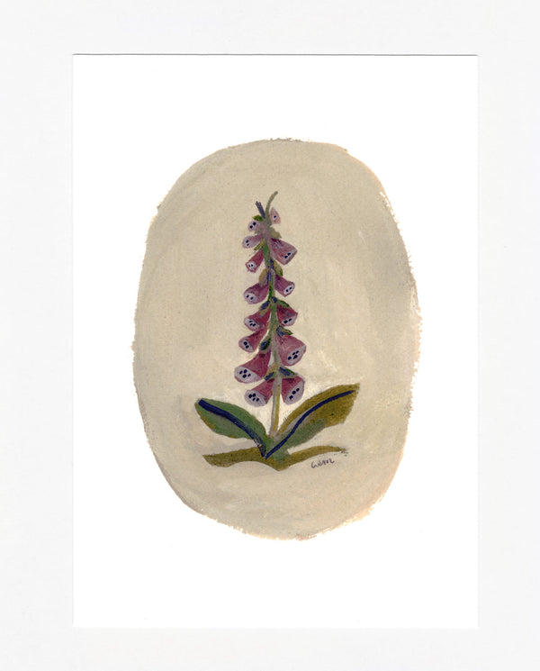 Foxgloves a5 print