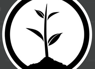 Showcasing Onetreeplanted.org and its six pillars