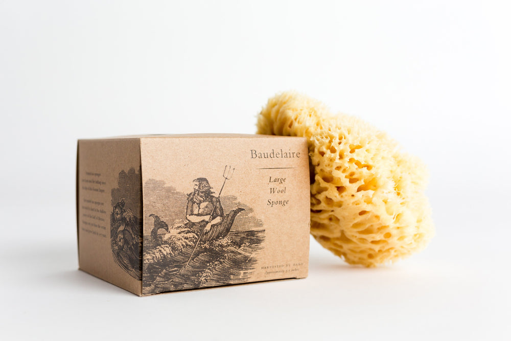 Boxed Wool Bath Sponge