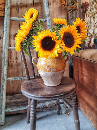 French Country rustic mustard glazed  Confit Pot Confit Jar Cruche Graisse Terracotta van gogh sunflowers Dusty Gems Interiors Nantwich
