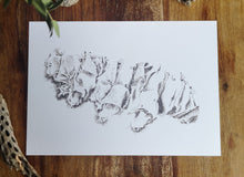Load image into Gallery viewer, Tardigrade, Original Drawing