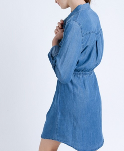 Tarryall Denim Dress