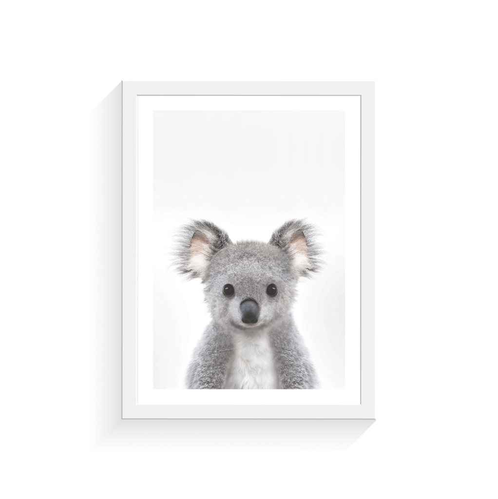 Baby Koala - Jenna Davie Illustration